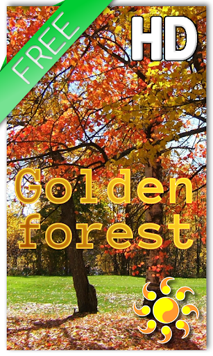 Golden Forest LWP