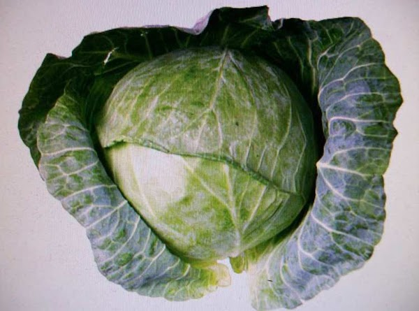 Cabbage With Cheese Sauce By Freda Recipe