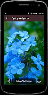 Download Spring Wallpaper For PC Windows and Mac apk screenshot 3