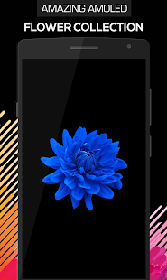 App AMOLED Wallpapers 4K & HD - Auto Wallpaper Changer APK for Windows Phone