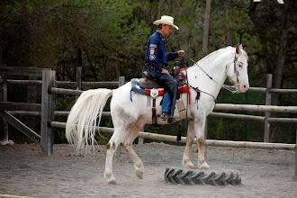 Foto: Campeonato autonomico y de España, Rodeo, Rancho el Paso.  *** Local Caption *** Hipica