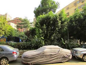Photo: la plaza, esa que los taxistas no conocen, un diminuto triángulo frente al edificio donde se encuentre el CCDC