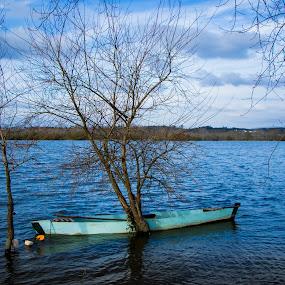 Small Boat on a Lake by João Pedro Ferreira Simões - Transportation Boats ( blue, flood, lake, fishing, portugal, boat, small )