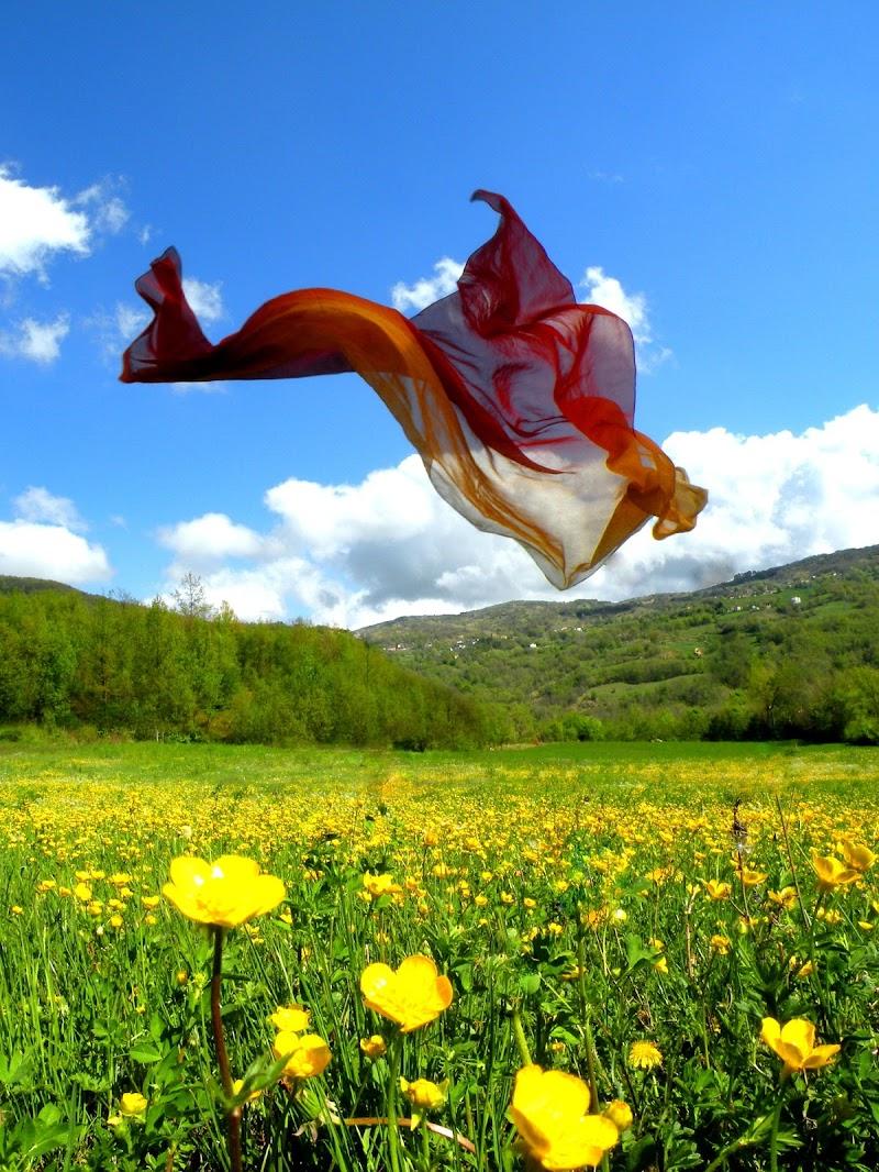 E un soffio di vento la fa continuare... di GabrieleT