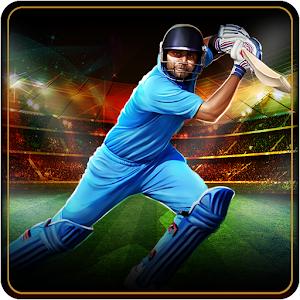 T20 cricket games 2012