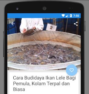 Panduan Budidaya Lele Bioflok Lengkap - náhled