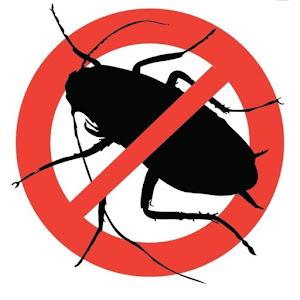 Set 2 x Insecticid tip seringa, solutie antigandaci RoachDoctor