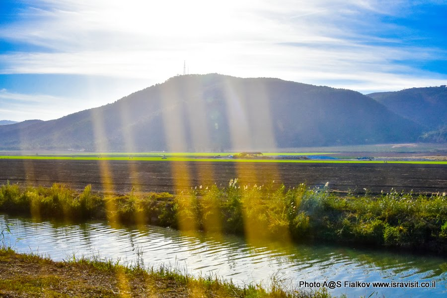 Пейзаж долины Хула. Экскурсия в национальный заповедник перелетных птиц.