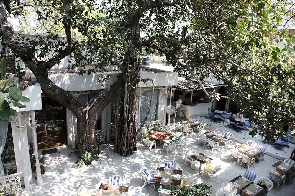 olive-bar-&-kitchen-romantic-restaurants-in-south-delhi_image