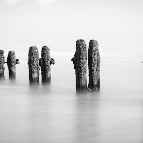 Blyth Sea Defence  by John Haswell - Landscapes Beaches ( sea defence, seascape, b&w, minimalistic, groynes,  )