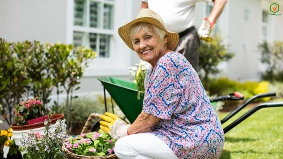 C:\Users\Pritam\Desktop\mama\pictures\an-old-person-doing-gardening.jpg