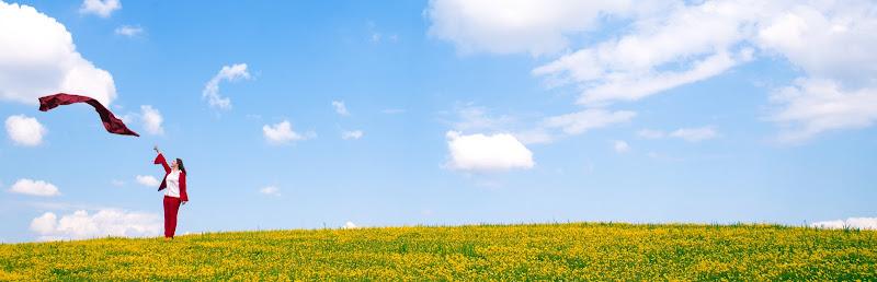 Prato giallo di Massimiliano zompi