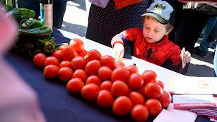 Imagen de archivo de una celebración del Día del Tomate.