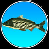 True Fishing (key)