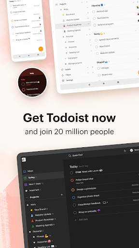 Todoist: To-Do List, Tasks & Reminders