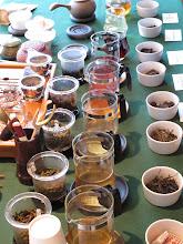 Photo: Tea Tasting, Pure Puer, November 2010