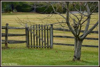 Photo: Tony & Eileen's Backyard