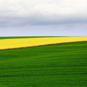by Pier Riccardo Vanni - Landscapes Prairies, Meadows & Fields
