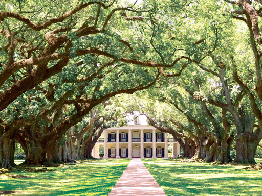 Guests on the Queen of the Mississippi traveling to Louisiana will get a chance to see Oak Alley Plantation, a historic, beautiful landmark with oak trees dating from the early 1700s.