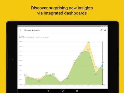 Microsoft Power BI–Business data analytics Screenshot