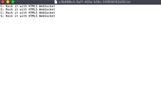 Websocket Logger