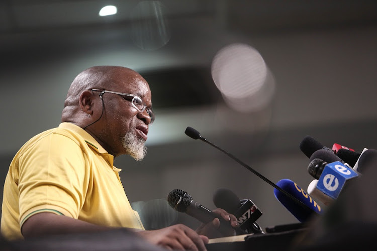 Gwede Mantashe. Picture: ALAISTER RUSSELL/THE TIMES