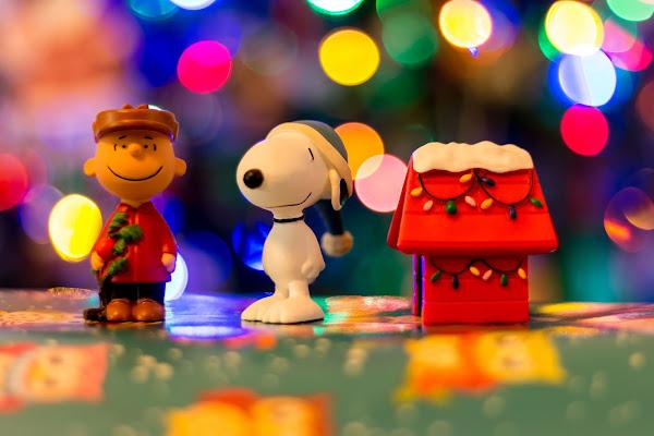 Merry Christmas Charlie Brown di Andrea Calò