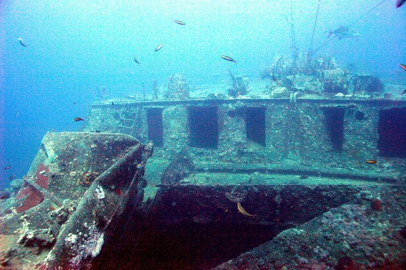 Photo: Forward hold on the SS Thsitlegorm