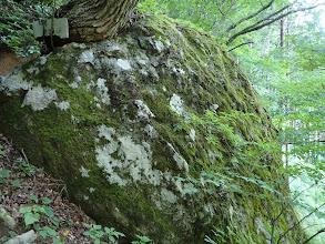 夫婦岩(奥にもあるが見えない)