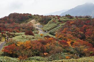 Photo: 山上にて