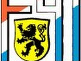 Aurélien Joachim quitte Dudelange pour Willem II