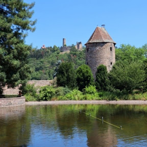 【世界の街角】南ドイツの小さな町ヴァインハイムのシンボルになっている2つの城を訪ねて