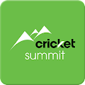 Cricket Summit APK for Bluestacks