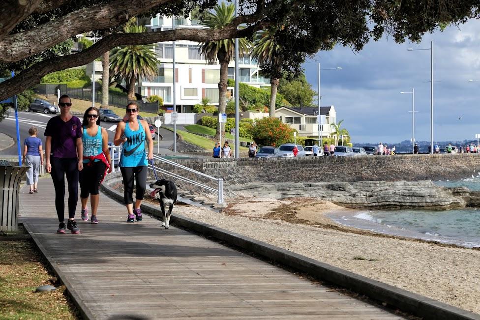 Auckland - biegacze