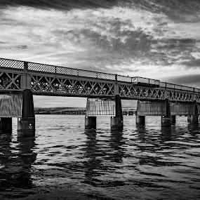 Tay Rail Bridge by J Licht - Buildings & Architecture Bridges & Suspended Structures