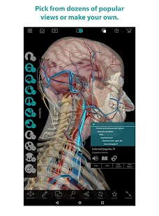 Human Anatomy Atlas Screenshot 7