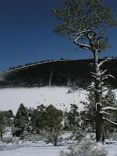 Photo: Snow and Cinder Cone