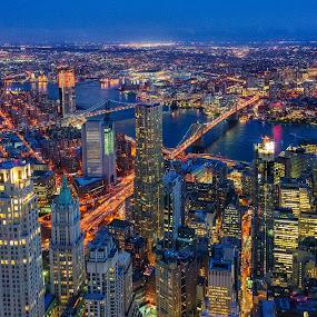 NYC at Night by Carol Ward - City,  Street & Park  Skylines ( night photography, one world observatory, night time, manhattan, new york city, new york, nyc, nightscape )