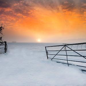 lincoln fields sunset 1.jpg