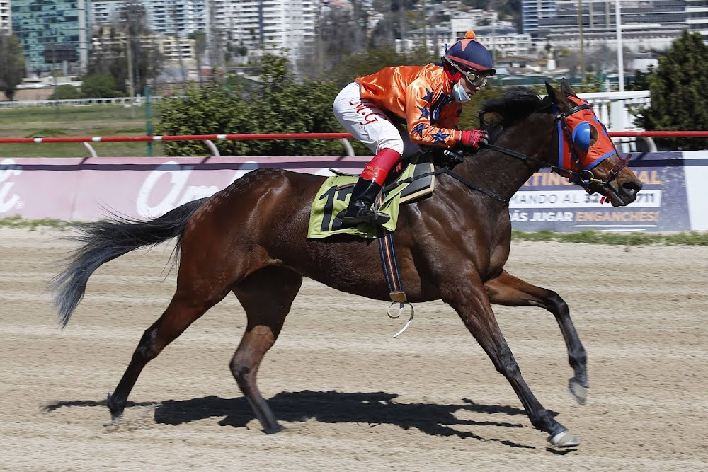Bachata Rosa (Papelon) conquista Condicional (1100m-Arena-VSC). - Staff ElTurf.com