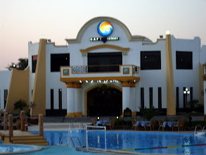 Photo: В Шарме прекрасный домашний риф у отеля Days Inn Gafy, основные фотографии сделаны именно там