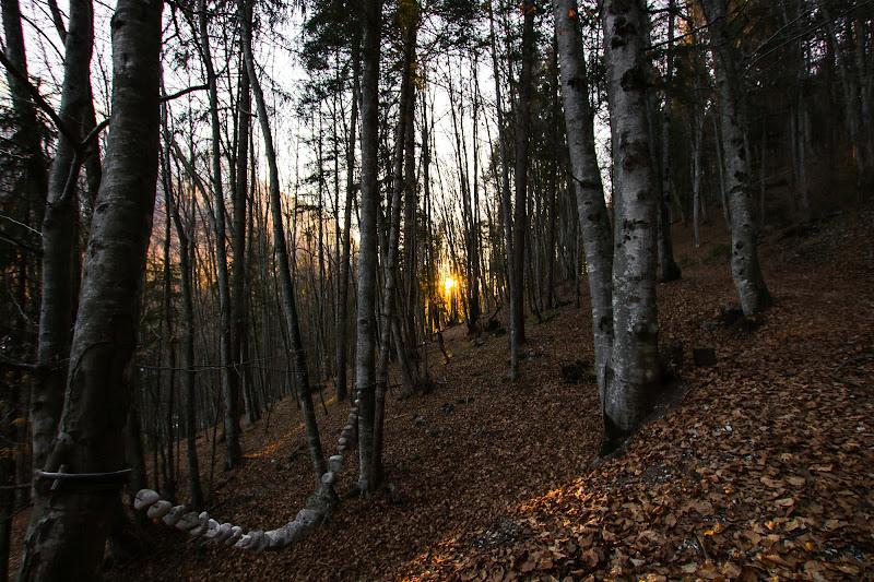 Sentiero per il sole di marco loss