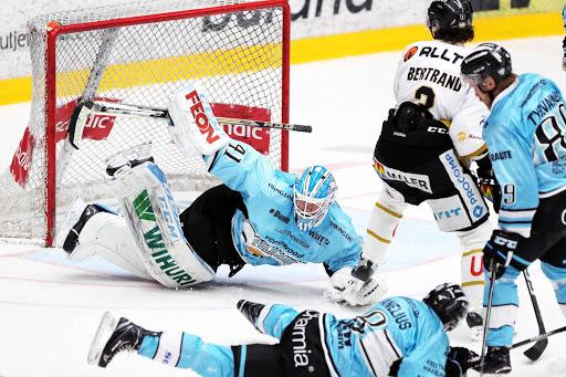 Janne Juvonen oli mies paikallaan Pelicansin ja Kärppien edellisessä koitoksessa. (Kuva: Tomi Natri)