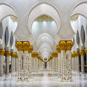 by Abbas Mohammed - Buildings & Architecture Statues & Monuments
