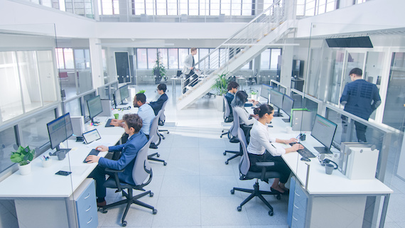 A team of web developers working on their computers in an office