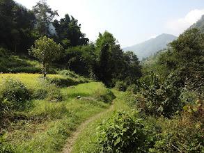 Photo: Entre Kenja et Bhamti Bhandar