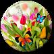 Spring Live Wallpaper (app)