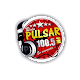 Radio Pulsar Ambo Huanuco for PC-Windows 7,8,10 and Mac