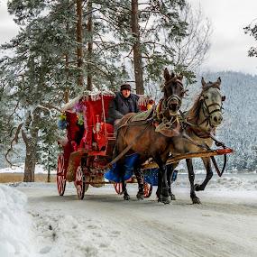 by Veli Toluay - Transportation Other