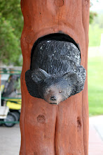 Photo: 07/06/2013 - Bear Country Park, Rapid City, South Dakota
